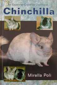 An Essential Guide to Owning a Chinchilla