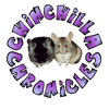 Chinchilla Chronicles - Home to chinchilla care and education